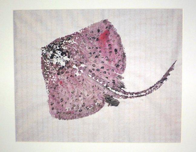 peixes de tinta 04