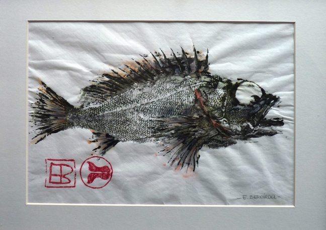 peixes de tinta 06